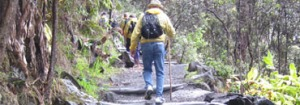 Photo of man hiking up path